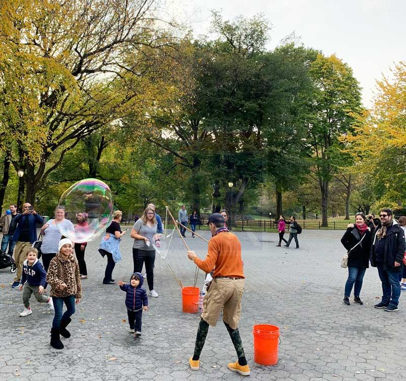 novembro em nova york